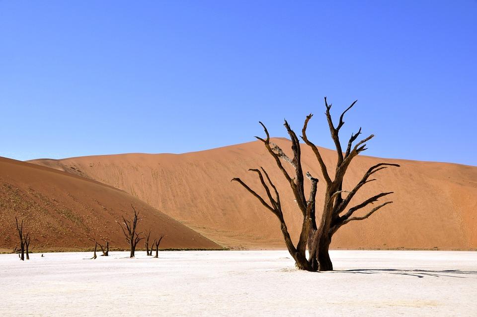 Deserto do Namibe com duna ao fundo