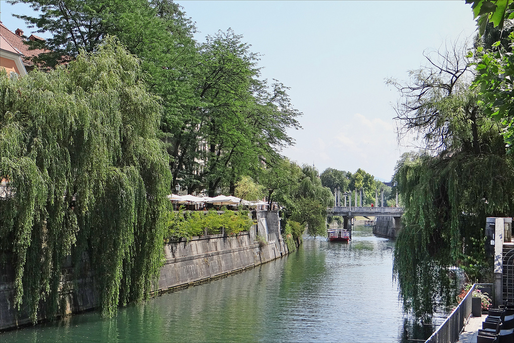 7 motivos para visitar Ljubljana